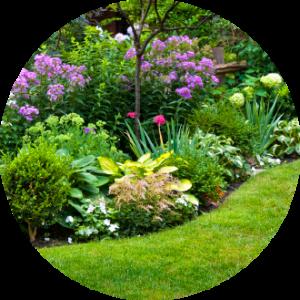 perennial garden landscape border