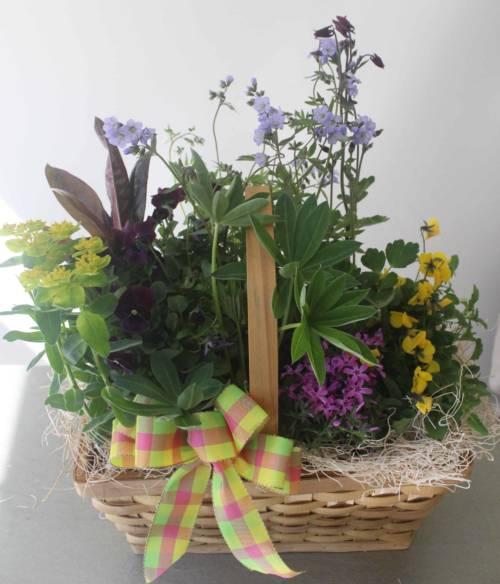 Perennial garden basket by studleys studleys flower gardens perennial garden basket mightylinksfo