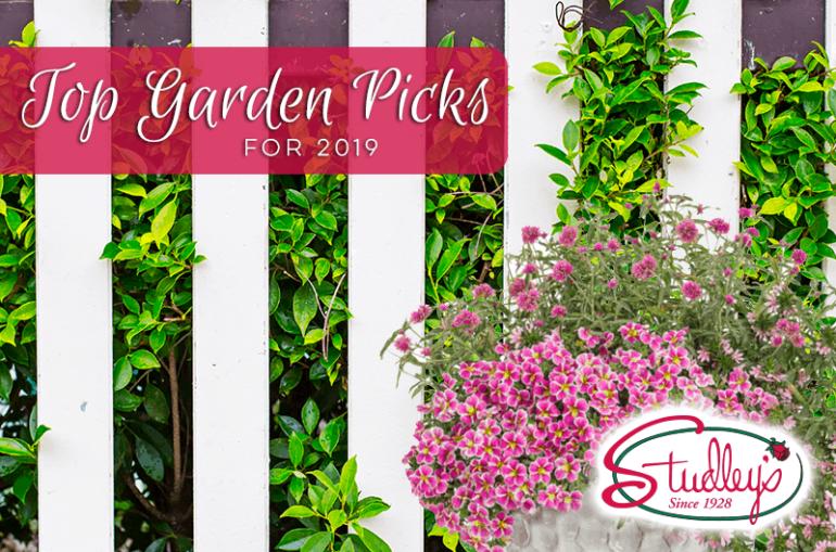 Top Garden Picks For 2019