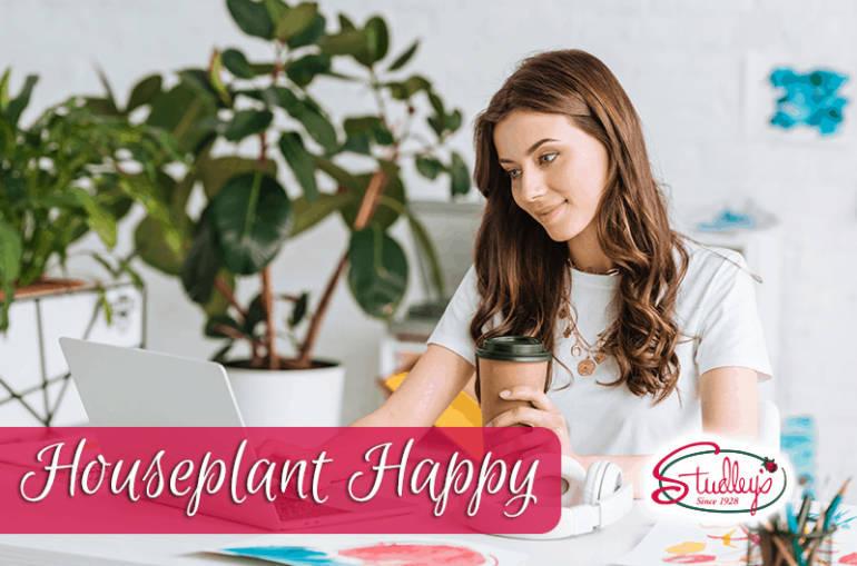 Houseplant Happy